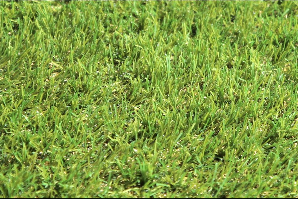 Synthetic Grass -Next Generation Turf